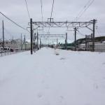 ネパール旅行記1日目 東京を襲った20年に一度の大雪により飛行機に乗り遅れる・・・。